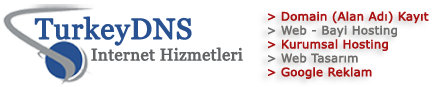 TurkeyDNS İnternet Hizmetleri